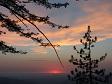Sunset Scene.jpg